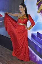 Pooja Misra at Pefect Miss Mumbai beauty contest in St Andrews, Mumbai on 24th May 2014 (38)_5381c35bd489c.JPG