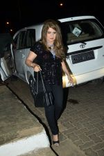 Ana Singh at Heropanti success bash in Plive, Mumbai on 25th May 2014 (10)_5382ea5d55825.JPG