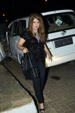 Ana Singh at Heropanti success bash in Plive, Mumbai on 25th May 2014 (9)_5382ea5cc03b1.JPG