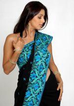 Bhumika Chawla (13)_538587d369dd2.jpg