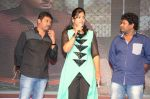 Karthikeya Movie Audio Launch (230)_538593eb42d80.jpg