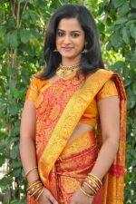 Nanditha (112)_53859502ba0c9.jpg
