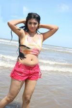 Telugu Actress Prathista Hot Spicy Stills (12)_538595f06f5b8.jpg