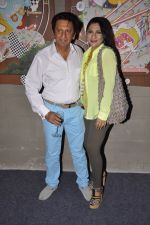 Aarti Surendranath, Kailash Surendranath at Art Guild House launch in Mumbai on 30th May 2014 (35)_53894c878bfcc.JPG