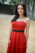 Kristina at Telugu Film Gali Pattam Press Meet on 2nd June 2014 (11)_538c5ec4ea5c4.jpg