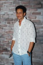 Abhishek Rawat at Bhatak Lena Bawre serial bash at Villa 69 in Mumbai on 2nd June 2014 (78)_538d5f0b2ef1b.JPG