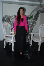 Rati Pandey at Bhatak Lena Bawre serial bash at Villa 69 in Mumbai on 2nd June 2014 (62)_538d5e5660f6e.JPG