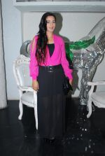 Rati Pandey at Bhatak Lena Bawre serial bash at Villa 69 in Mumbai on 2nd June 2014 (63)_538d5e56ec080.JPG