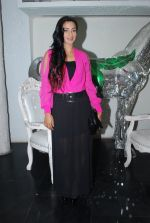 Rati Pandey at Bhatak Lena Bawre serial bash at Villa 69 in Mumbai on 2nd June 2014 (64)_538d5e577ca92.JPG