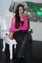 Rati Pandey at Bhatak Lena Bawre serial bash at Villa 69 in Mumbai on 2nd June 2014 (65)_538d5e5822df9.JPG