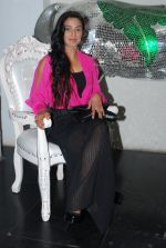 Rati Pandey at Bhatak Lena Bawre serial bash at Villa 69 in Mumbai on 2nd June 2014 (67)_538d5e5931ea1.JPG