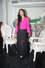 Rati Pandey at Bhatak Lena Bawre serial bash at Villa 69 in Mumbai on 2nd June 2014 (68)_538d5e59d8e49.JPG
