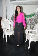 Rati Pandey at Bhatak Lena Bawre serial bash at Villa 69 in Mumbai on 2nd June 2014 (69)_538d5e5a6009f.JPG