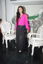 Rati Pandey at Bhatak Lena Bawre serial bash at Villa 69 in Mumbai on 2nd June 2014 (70)_538d5e5ae20ab.JPG