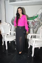 Rati Pandey at Bhatak Lena Bawre serial bash at Villa 69 in Mumbai on 2nd June 2014 (71)_538d5e5b68f7a.JPG