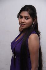 Madurakaranga Audio Launch on 3rd June 2014 (5)_538e892594405.jpg