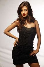 Riya Sen photo shoot on 3rd June 2014 (10)_538ef47d667d7.jpg