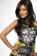 Riya Sen photo shoot on 3rd June 2014 (13)_538ef47f27697.jpg
