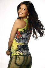 Riya Sen photo shoot on 3rd June 2014 (14)_538ef47fb02d1.jpg
