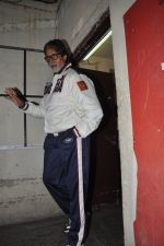 Amitabh Bachchan snapped at PVR on 4th June 2014 (26)_5390175f94aae.JPG