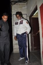 Amitabh Bachchan snapped at PVR on 4th June 2014 (28)_53901760a8807.JPG
