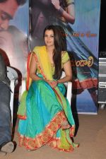 Nazia Hussain at Neejathaga nenundaali teaser launch on 7th June 2014 (35)_5393cfe7c53bf.JPG