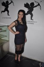 at Meruthya gangsters launch in Villa 69, Mumbai on 9th June 2014 (13)_5396d0c727c36.JPG
