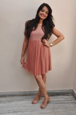 Nikitha Narayan Photo Shoot (190)_5399474046b7e.JPG