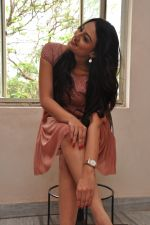 Nikitha Narayan Photo Shoot (227)_5399476031d83.JPG