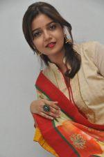 Swathi  (81)_5399475e29d67.jpg