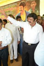 at Happy Birthday Balayya celebration by All India NBK Fans on 10th June 2014 (225)_539945caa7d1d.jpg