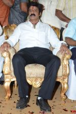 at Happy Birthday Balayya celebration by All India NBK Fans on 10th June 2014 (234)_539945d045fd7.jpg