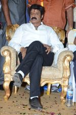 at Happy Birthday Balayya celebration by All India NBK Fans on 10th June 2014 (241)_539945d659379.jpg