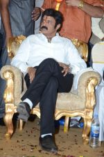 at Happy Birthday Balayya celebration by All India NBK Fans on 10th June 2014 (243)_539945d8dd35b.jpg