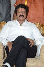 at Happy Birthday Balayya celebration by All India NBK Fans on 10th June 2014 (245)_539945db798df.jpg