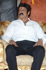 at Happy Birthday Balayya celebration by All India NBK Fans on 10th June 2014 (249)_539945dea86d0.jpg