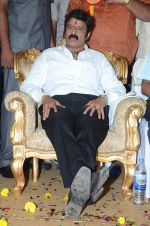 at Happy Birthday Balayya celebration by All India NBK Fans on 10th June 2014 (250)_539945df5c311.jpg