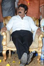 at Happy Birthday Balayya celebration by All India NBK Fans on 10th June 2014 (252)_539945e0dd8bb.jpg