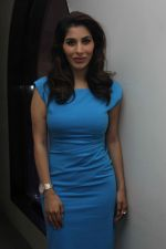 Sophie Choudry at Raat Akeli Launch Press Meet in Mumbai on 18th June 2014 (26)_53a2d70c21a78.JPG
