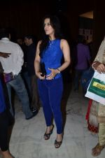 Tulip Joshi at Brijesh Singh book launch on 21st June 2014 (36)_53a6bba6956a8.JPG