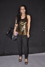 Tulip Joshi at Star Pariwar Awards in NSCI on 22nd June 2014 (76)_53a839b2bea41.JPG