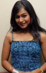 Kalyani Telugu Actress Photos (31)_53b1272f76388.jpg