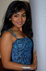 Kalyani Telugu Actress Photos (3)_53b1271310d65.jpg