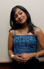 Kalyani Telugu Actress Photos (34)_53b1273352a52.jpg