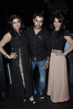 Vivian Dsena and Vahbiz Dorabajee, Lauren at Vivian Dsena_s birthday party in Villa 69, Mumbai on 28th June 2014 (61)_53b2a2a166d99.JPG