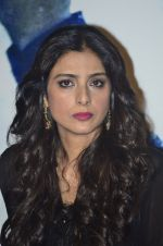 Tabu at the promotion of Haider on 8th July 2014 (36)_53bbd54a93dc9.JPG