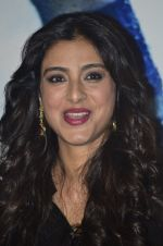 Tabu at the promotion of Haider on 8th July 2014 (38)_53bbd55be6526.JPG
