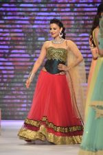 Ameesha Patel walks for Surya Golds at IIJW Day 1 in Grand Hyatt, Mumbai on 15th July 2014 (33)_53c66cc673133.JPG
