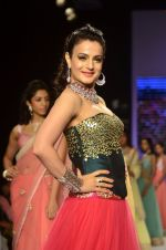 Ameesha Patel walks for Surya Golds at IIJW Day 1 in Grand Hyatt, Mumbai on 15th July 2014 (42)_53c66ccd83e1d.JPG