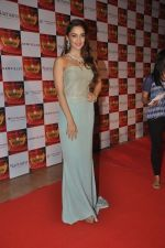 at Retail Jeweller Awards in Mumbai on 19th July 2014 (368)_53cbfb282133e.JPG